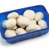 mushroom-punnet